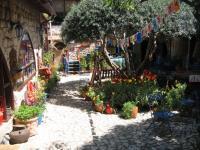 החצר הגן ופינת החי