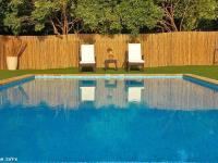 הבריכה והחצר